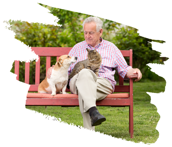 Man on a bench with a dog and cat